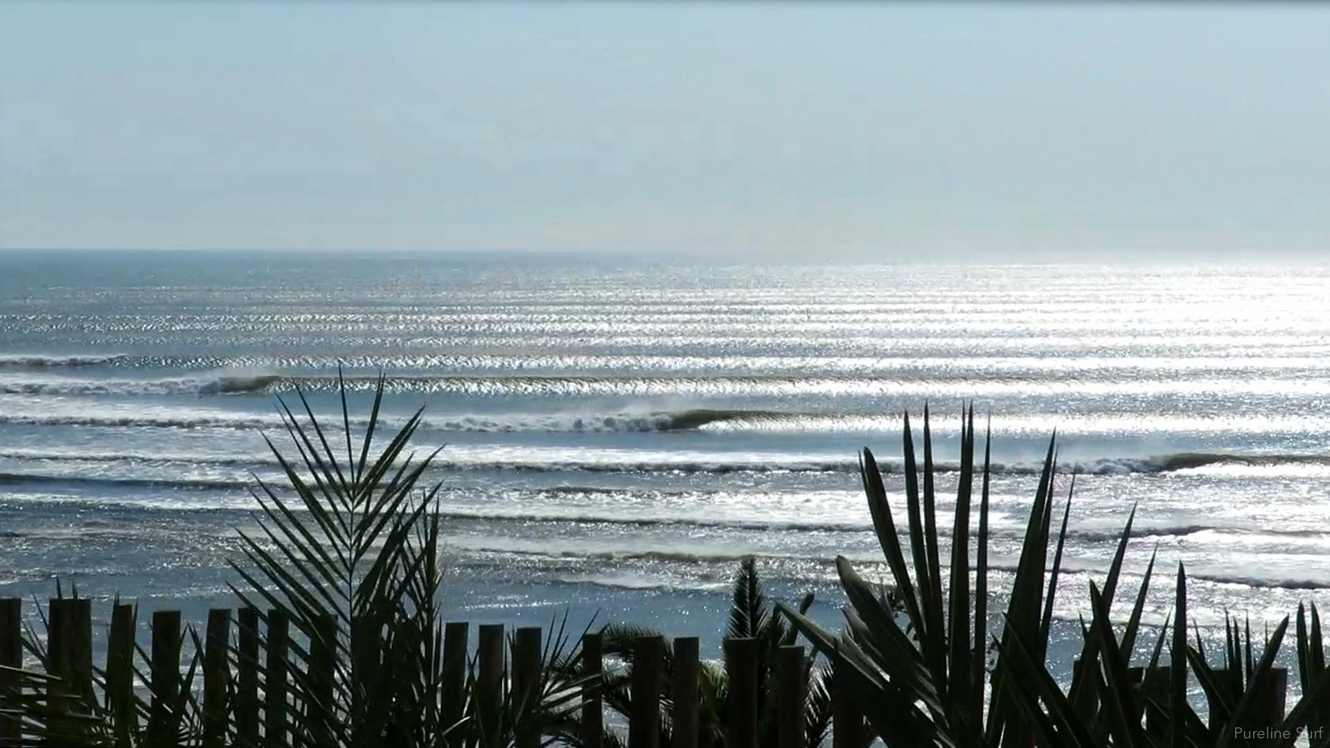 The amazing waves at Chicama, Peru during midday. Perfect lines of surf during a worldwide surf guiding trip with Pureline Surf.