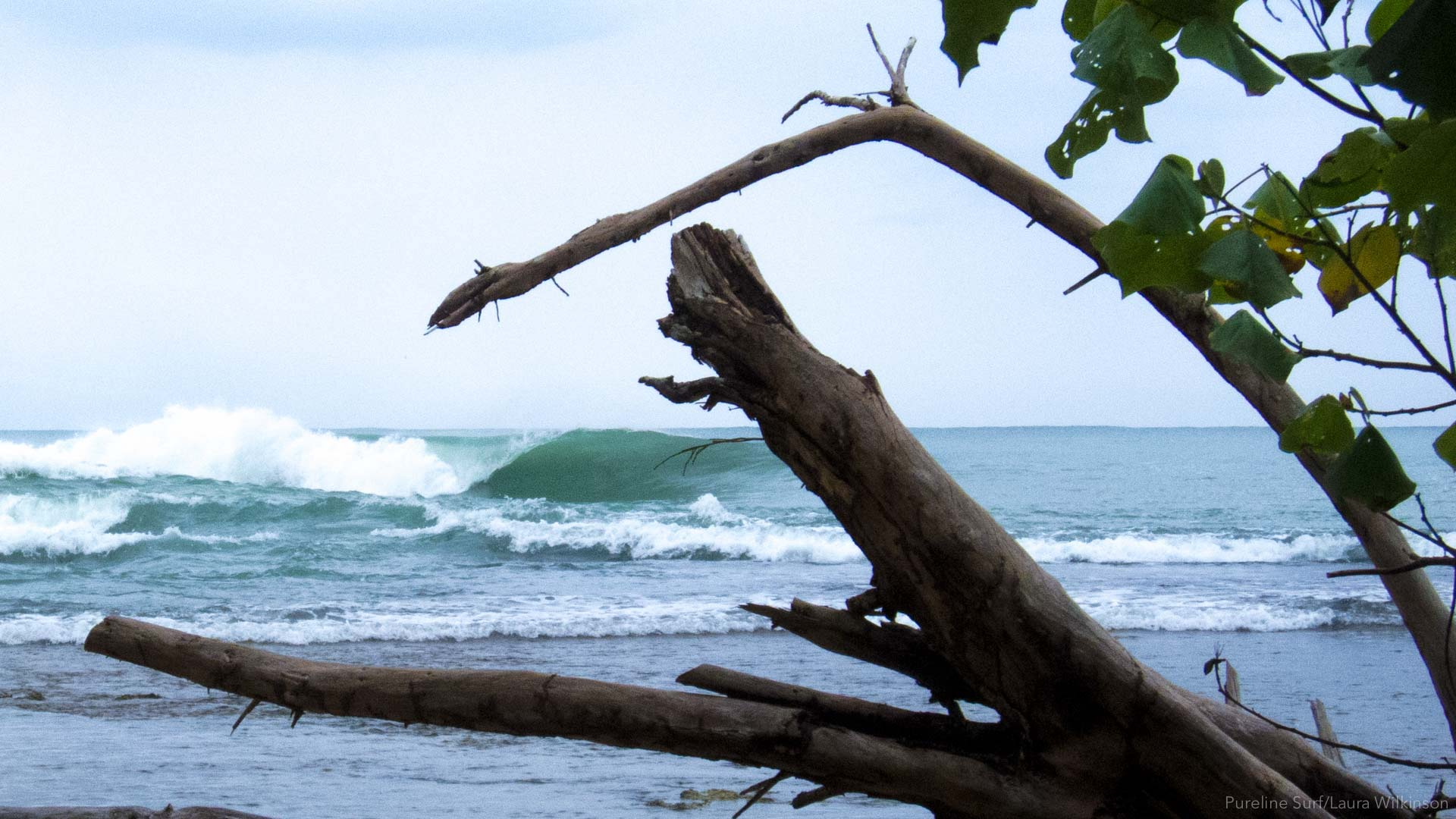 A great wave at Paunch in Bocas Del Toro. A fun spot we like to surf on our strike missions